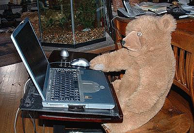 Bear at Work