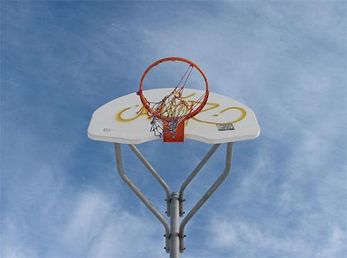 Le panier de basket