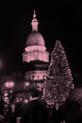 Capitol and Tree | by Aunt Owwee