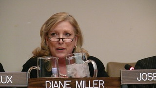 UN Our Common Humanity Forum - Diane Miller speaking | by danceinthesky