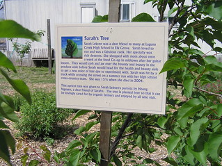 Soil born farm sarah 39 s tree annie john flickr for Soil born farms