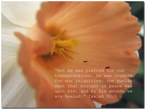 He was pierced for our transgressions . . . | by 1blessedmom Photography
