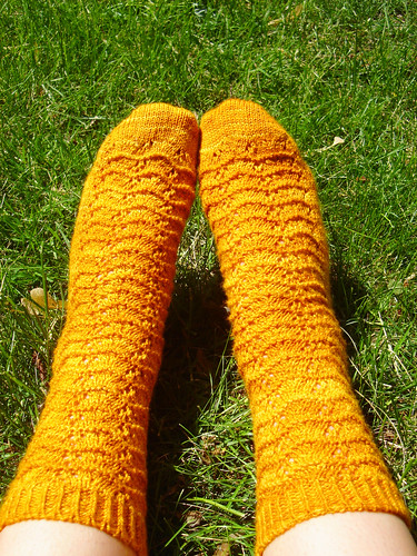 Marigolds in the grass 2 | by flint knits