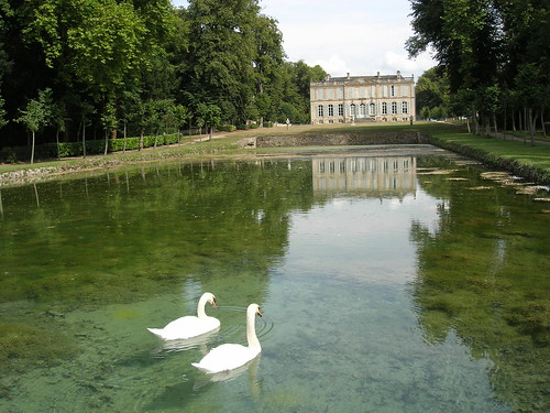 swans and castle | by Claudecf