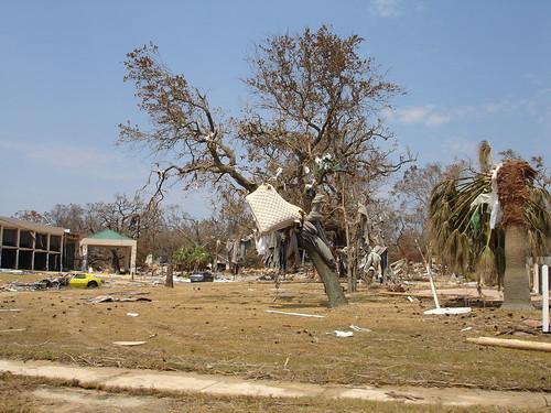 Hurricane Katrina - Biloxi - Mattress Impaled By Tree Limb