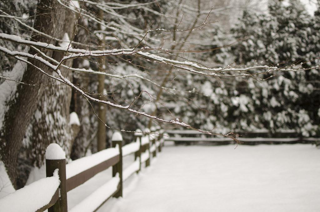 snow day 3