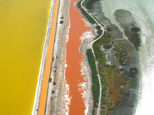 Tidal marshes and salt evaporation ponds, North Bay, near Napa | by Telstar Logistics