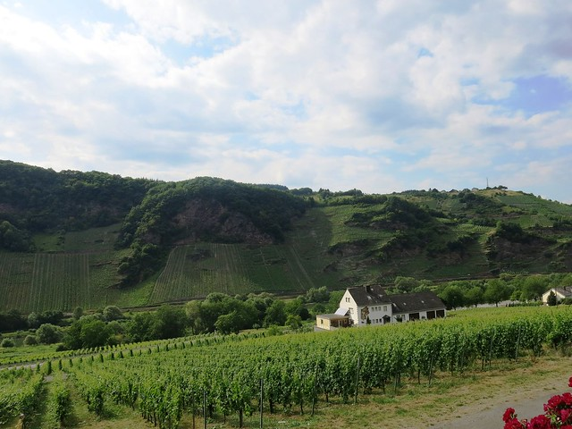 A Visit to the River Mosel area in Germany
