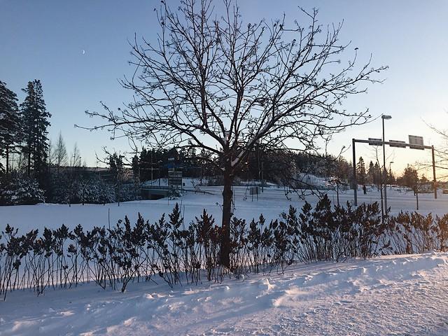 LuminenTalvimaisema, winter, snow, suomi, finland, vantaa, snowy, kuu, moon, january, tammikuu, visit finland, maisema, view, landscape,