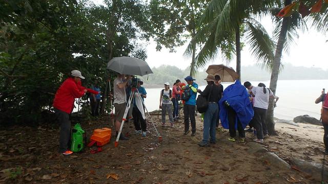 Restore Ubin Mangroves (R.U.M.) Initiative monthly walk, Dec 2016