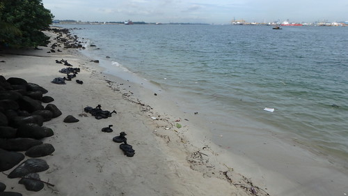 Oil spill in the Johor Strait (4 Jan 2017) from Punggol Jetty