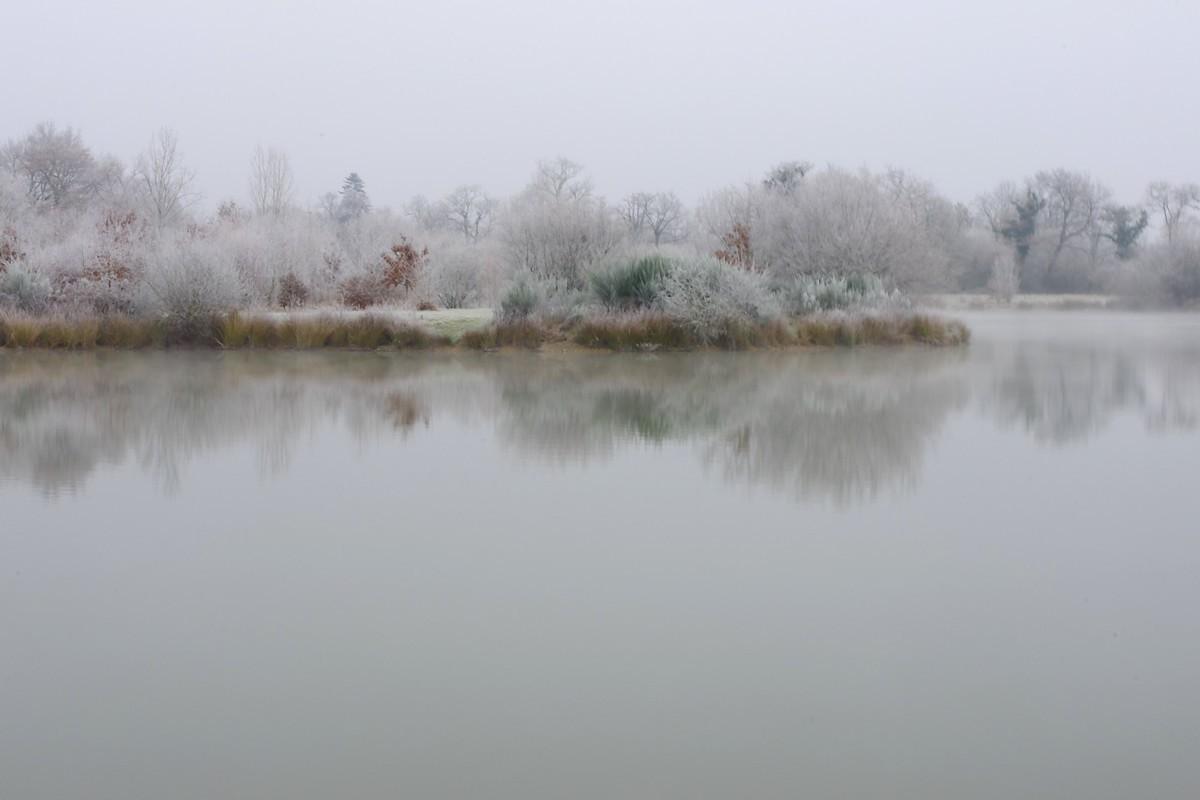 L'hiver 31174614873_c1615dcdb0_o