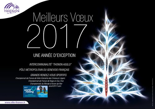 PDF VOEUX NUMERIQUES 2017_2017-01-05_12.53_01