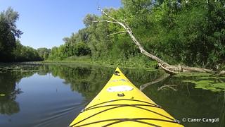 Canoe Trip at Kiev
