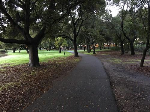 Walk to work. It felt fairytale-ish this morning