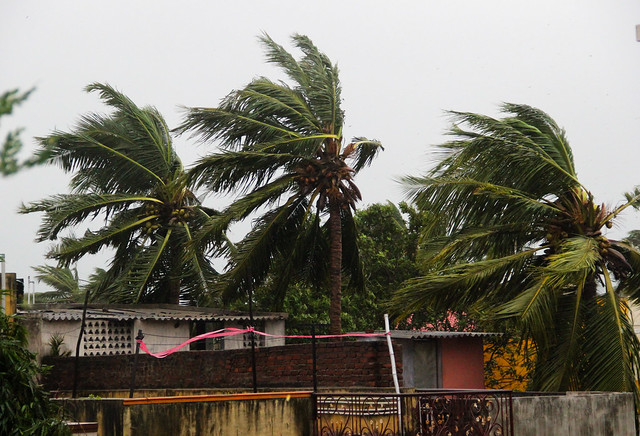 With winds gusting at 120 km/hr, cyclone Vardah is the worst to hit Chennai in over 22 years. The last time the city was hit by a severe cyclonic storm was in 1994 when the eye of the cyclone passed through the city.