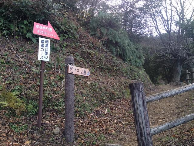 月見の森 月への階段 ササユリ園分岐