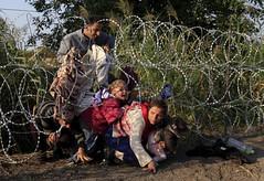 syrian_migrant
