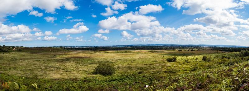 Panorma over Upton Heath