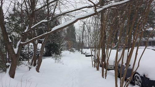 snow010817b