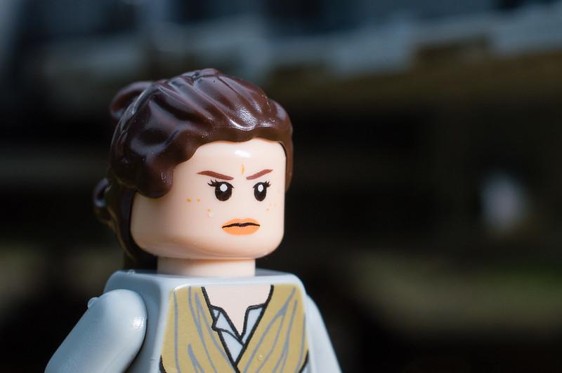 Rey (6:365:2017)