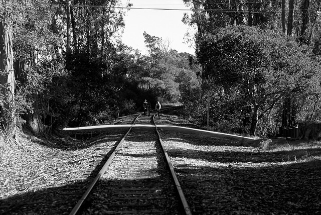 Tourists walk the tracks. In search of Christmas Town