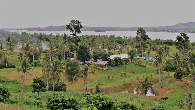 Organic-Farm-in-Leyte
