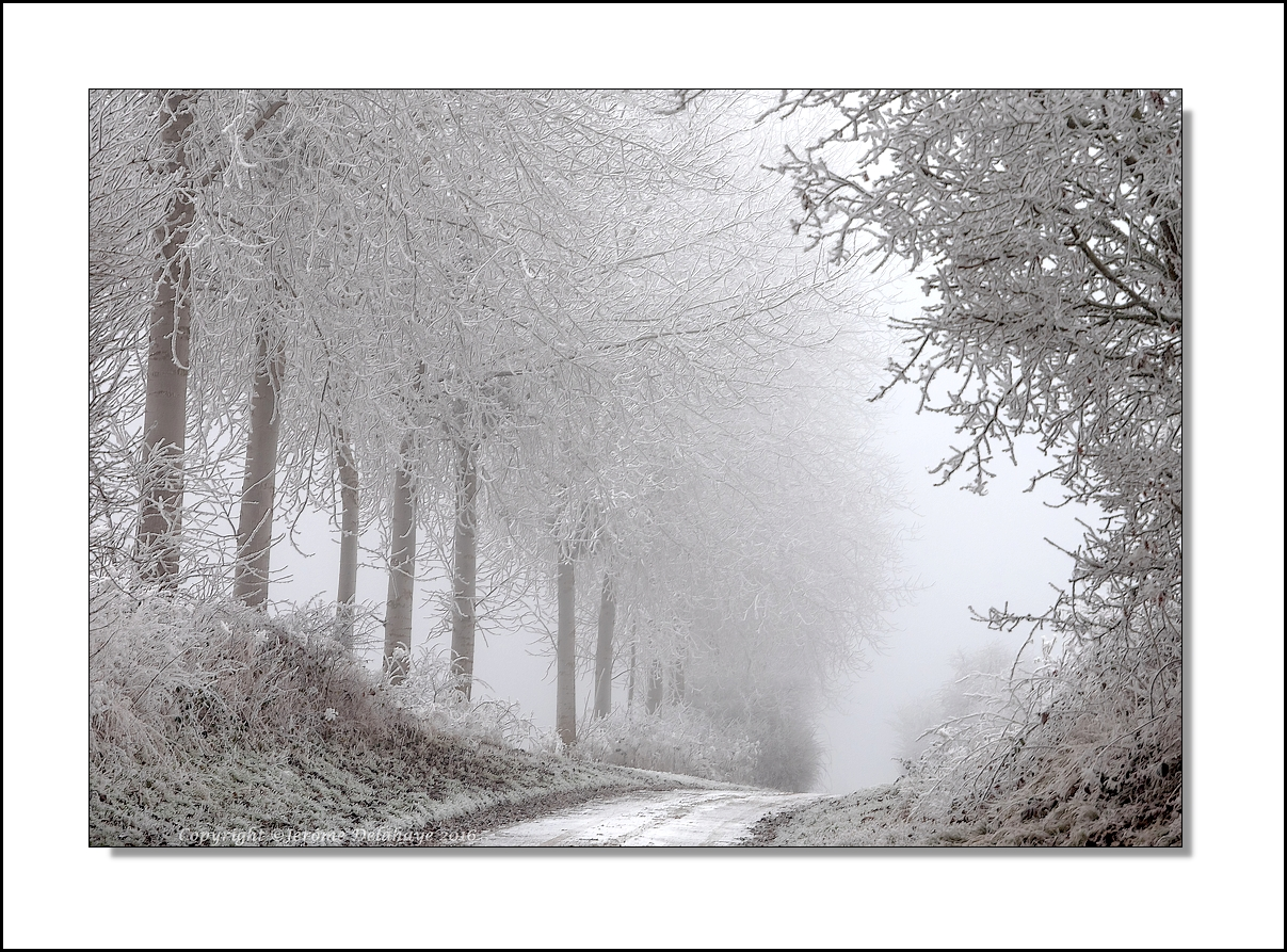 Vague de froid 32025294241_b959a0ebea_o