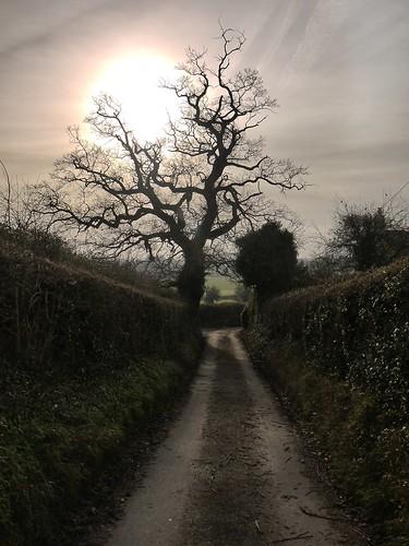 Gloucester Way