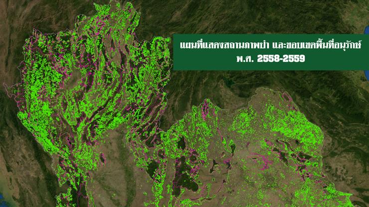 ป่าไม้ประเทศไทย