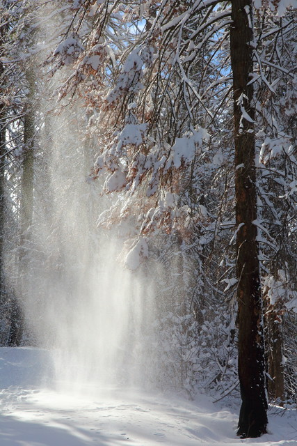 IMG_7406 Snow Falls