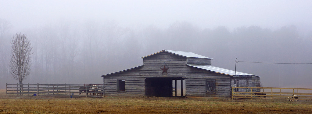 Foggy Barn 3