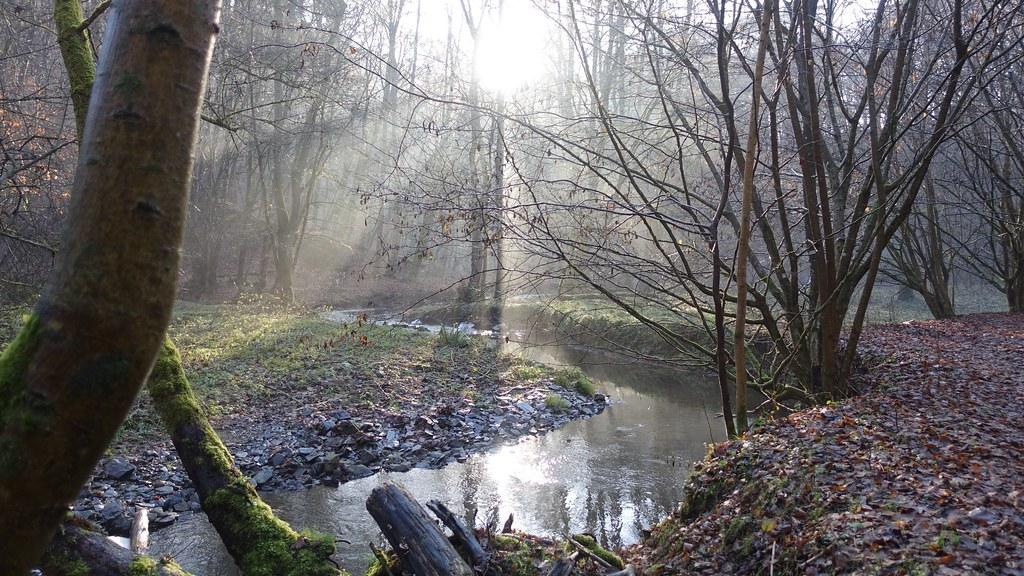 Brexbach - Wandern auf dem Saynsteig
