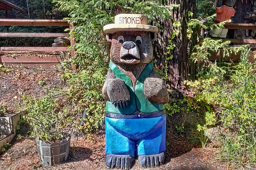 Smokey bear mobile chainsaw carving at the