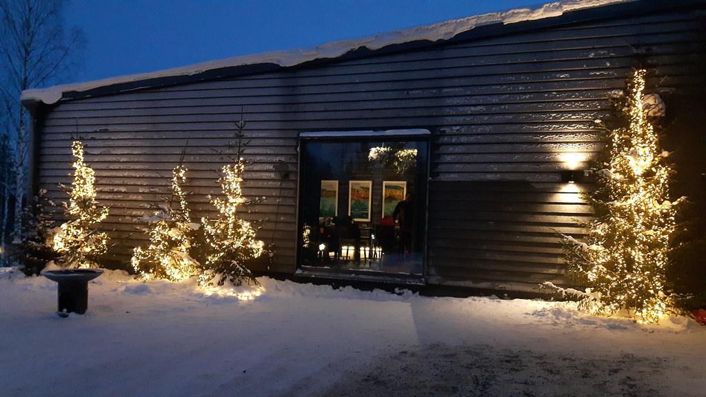 Restaurant Rakas Arctic treehouse (26)