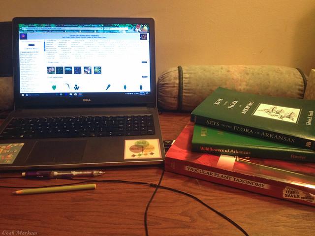Study Tools of Botany
