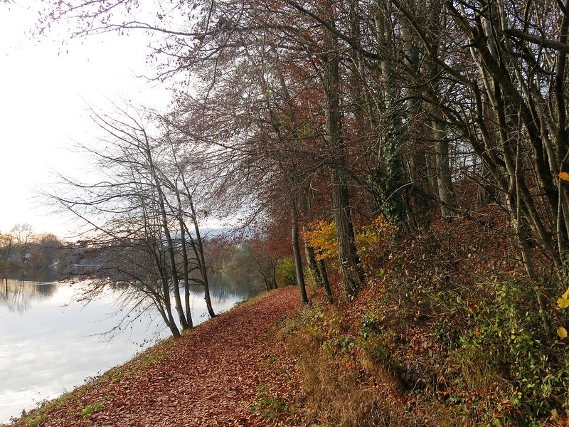 Along the River Aare