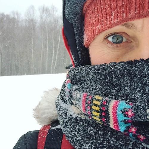 Frozen Andrea