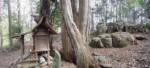 高蔵神社合成