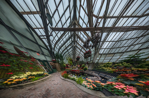 Lincoln Park Conservatory Green House Wide Version