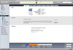 iTunes 7 - iPod summary | by Keng Susumpow