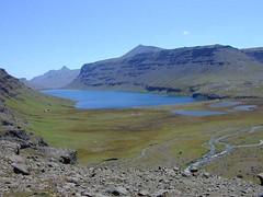tourbière (souille) de l'archipel des Kerguelen