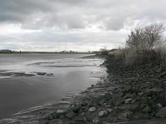 River Ems Side - an der Ems