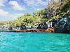 Nonsuch Island, Bermuda