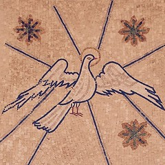 Don't let the dove fly away and not even know He is gone. Don't be like Samson and move ahead of Him only to need Him and find that the anointing has left. Seek Him and find Him again at all cost.#holyspirit #gentle #awareness #guard #seek #look #listen #