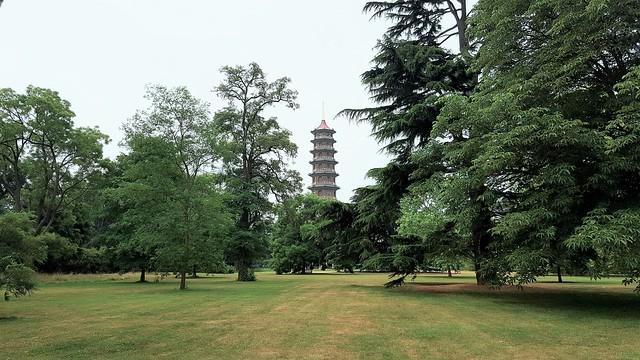 Lugares que ver Real Jardín Botánico de Kew