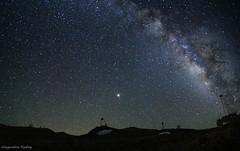 Telescopios Magic