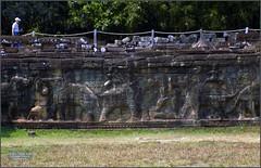 Angkor Thom, Elephant Terrace 20180202_113925 DSCN2516