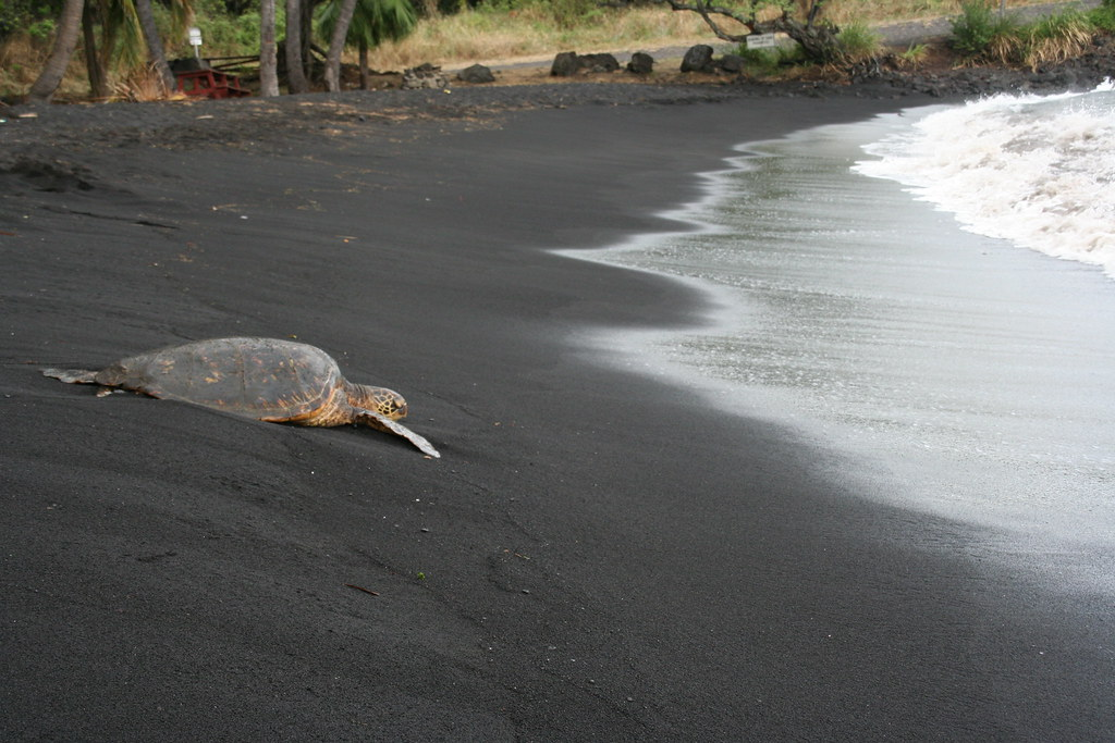 Island In Hawaii With Black Sand