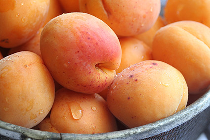 Apricots | by David Lebovitz